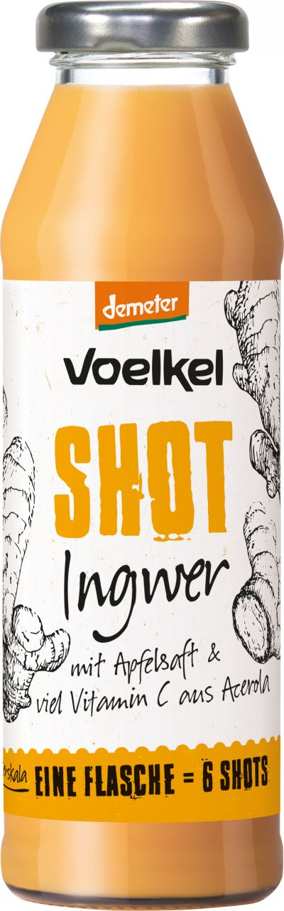 Shot Ingwer