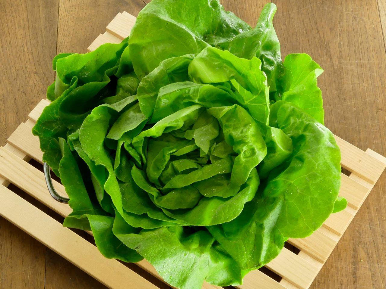 Blattsalat, grün