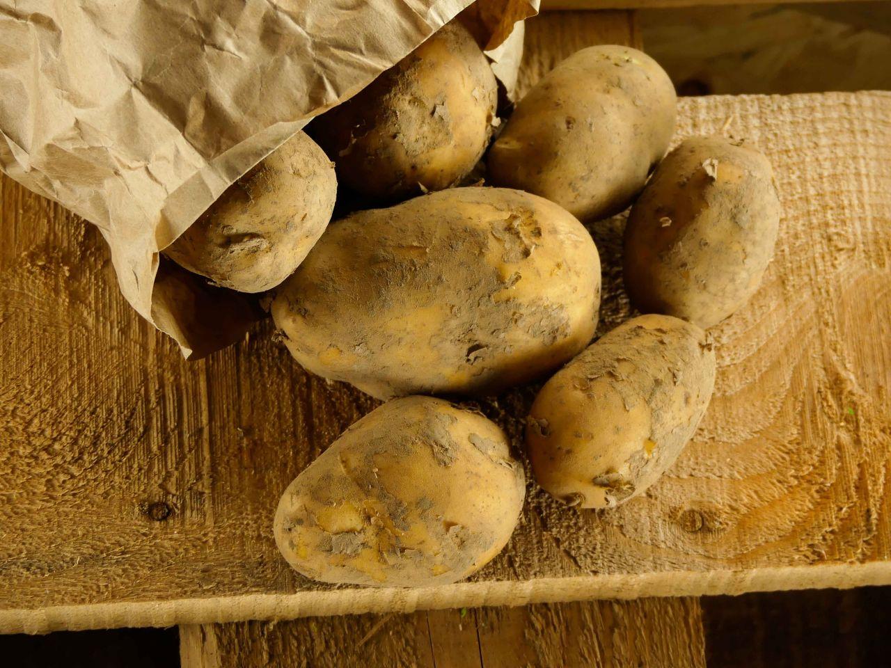 Kartoffeln (festkochend)